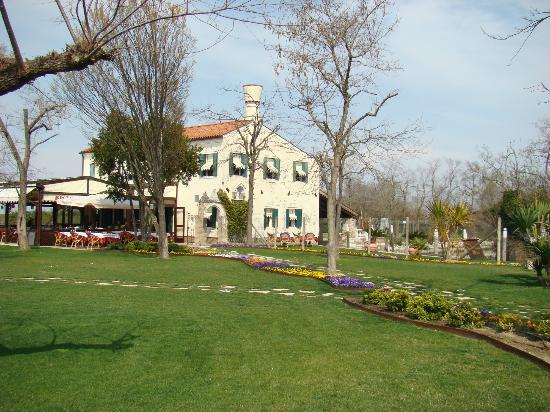 Torcello Island Restaurants