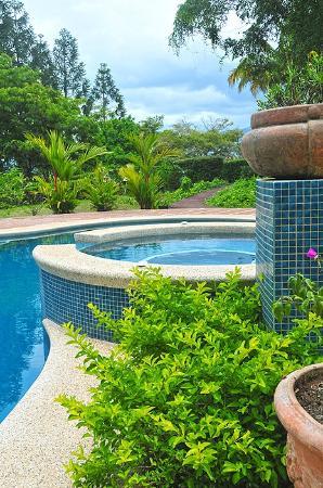 piscina y alrededores
