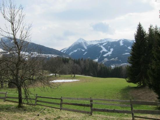 Naturhaus Lehnwieser: Aussicht hinter dem Haus