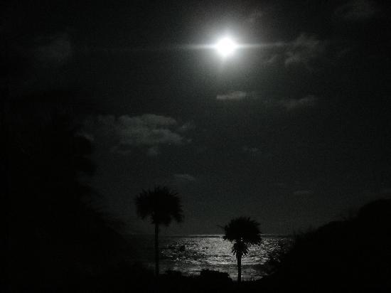 Playa Esperanza: Moonlight by the beach