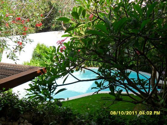 Kiss Bali: view