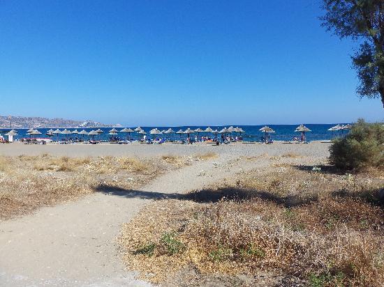 TUI Magic Life Candia Maris: beach