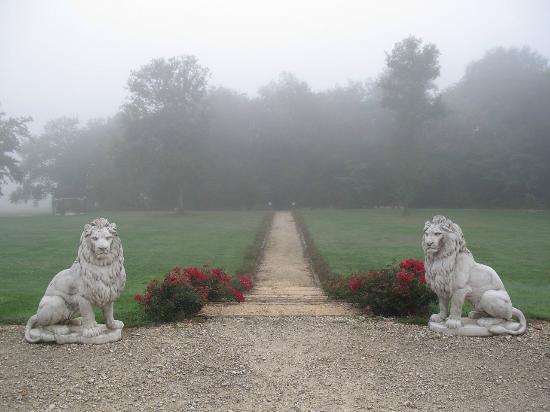 Saint-Caprais-De-Bordeaux, Francia: garden