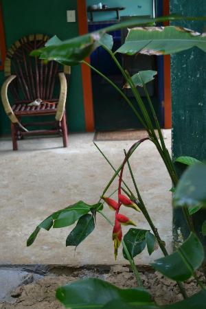 Tesoro Escondido : gardens and lodgings mix...entrance to Casa Verde