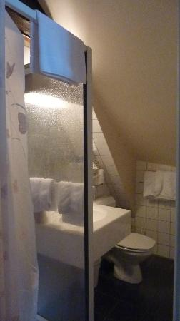 Hotel du Manoir: Lavabo con ducha