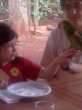 Casa Yaguarete: Amor a primera vista