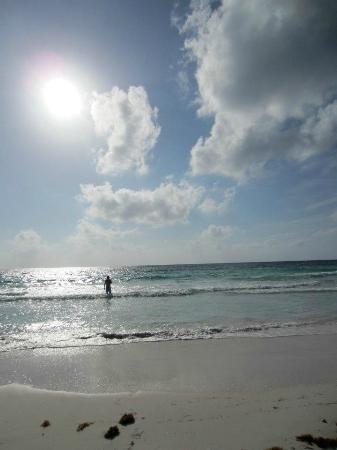 Cesiak Centro Ecologico Sian Ka'an: Beach
