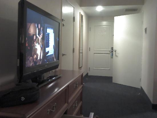 Hilton San Diego/Del Mar: LCD TV