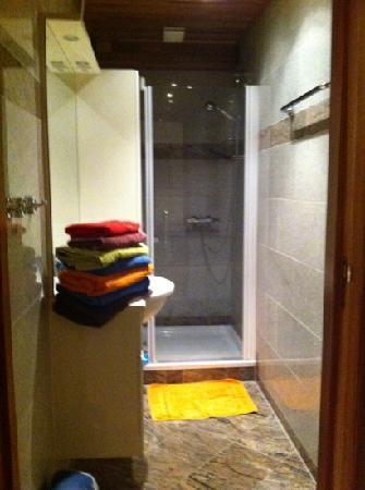 Nemo Apartments : shower room