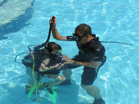 Extra Divers Dive Center : Бассейн