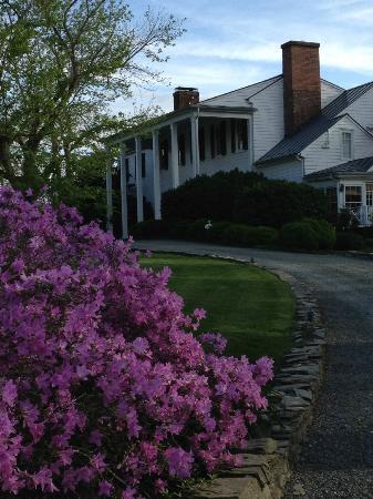 Clifton Inn: grounds
