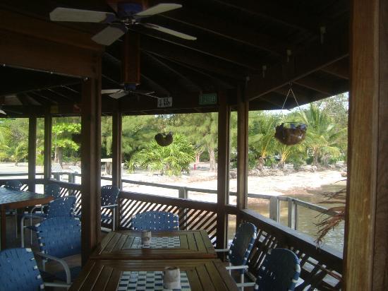 Purple Pelican Grill : La recepcion, donde puedes disfrutar de la rica comida.