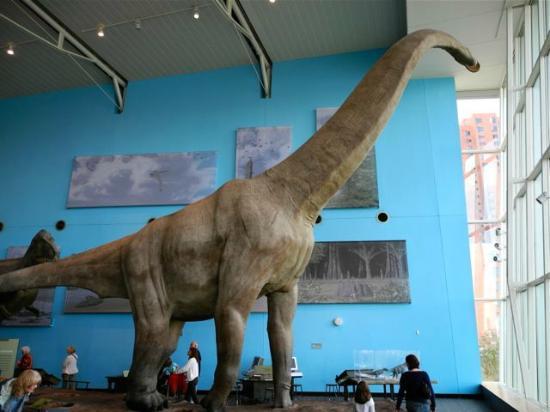 Maryland Science Center: A Full Size Dinosaur Mock-Up