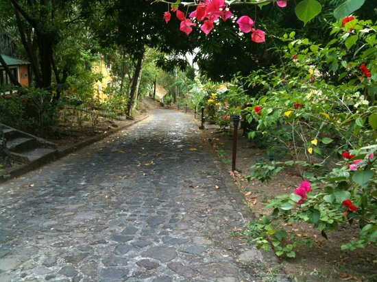Apoyo Resort : One of the stone roads winding through the resort