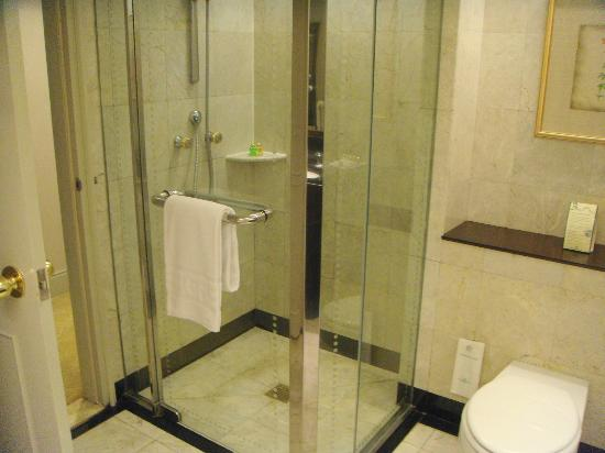 Evergreen Laurel Hotel: Marble-clad shower
