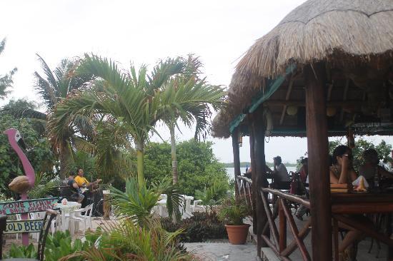 Bahia Tortuga: Beautiful bar