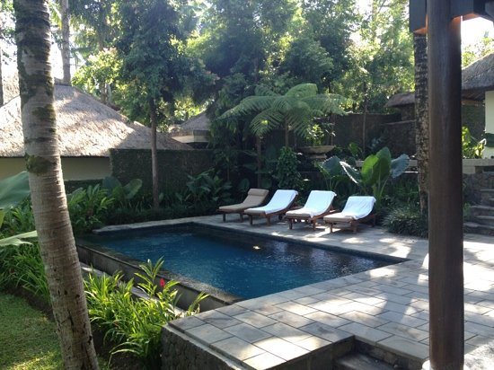 Kayumanis Ubud Private Villa & Spa: our pool!