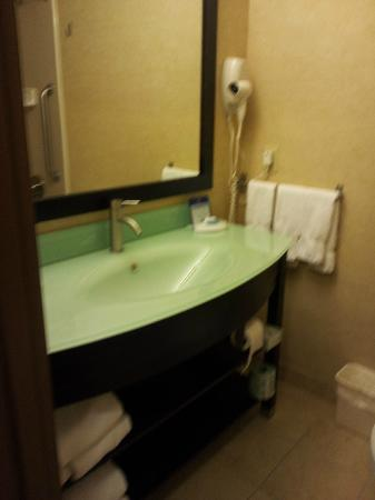 Best Western Plus Portage Hotel & Suites: Super Modern bathrooms