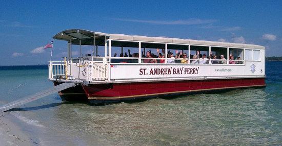 Bay Ferry Shell Island Dolphin Cruise