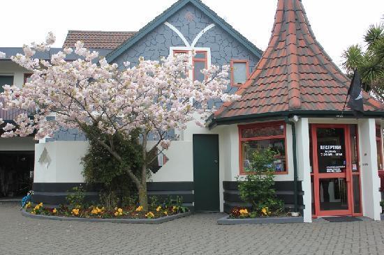 Amross Court Motor Lodge: Garden
