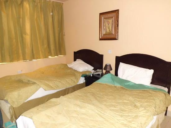 Royal Falcon Hotel: Twin Room