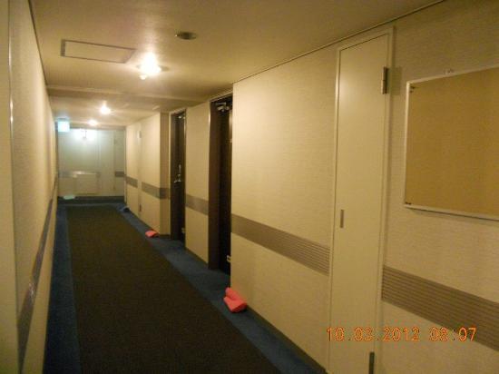 Shinjuku New City Hotel: Decent clean corridor