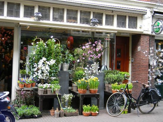 B & B de 9 Straatjes: Il negozio di fiori proprio soto il b&b.