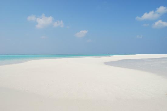 Sun Island Resort and Spa: BANC DE SABLE