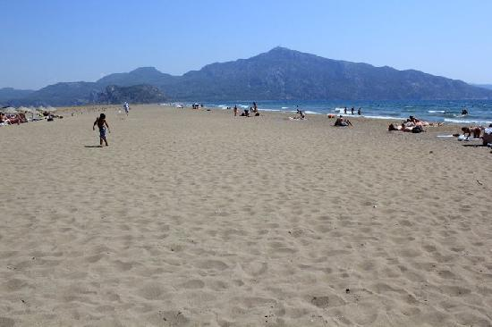 Iztuzu Beach : izuzu beach