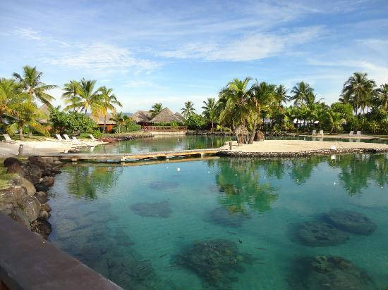 InterContinental Tahiti Resort & Spa: Piscine