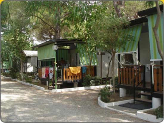 Villaggio Mondial Camping : viali bungalow