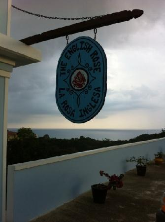 The English Rose / La Rosa Inglesa - GUESTHOUSE: View from front door