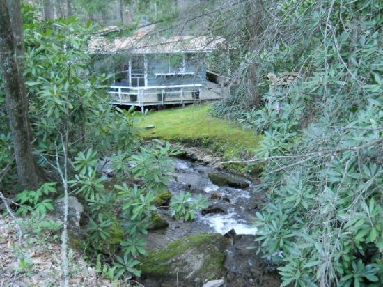 Timberwolf Creek Bed & Breakfast: Site of our wedding ceremony on mossy bank