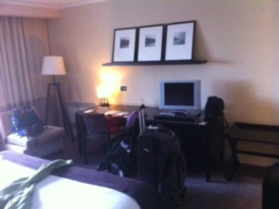 Shamrock Lodge Hotel Athlone : nice flat screen and decor