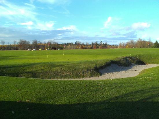 Golfclub Oberrot-Frankenberg: Platz
