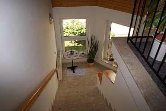 Hotel Pflug : Das Treppenhaus