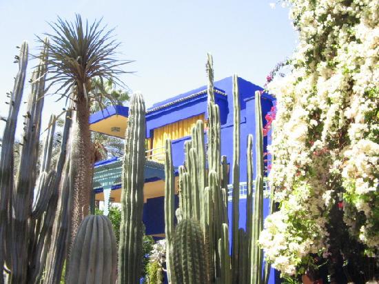 Villa oasis picture of jardin majorelle marrakech for Villas de jardin seychelles tripadvisor