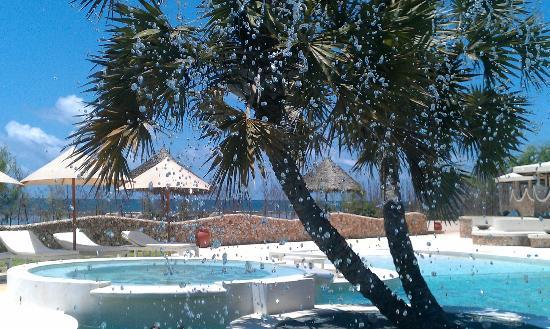 Kola Beach Resort: Amazing Pool Area with view of the Ocean