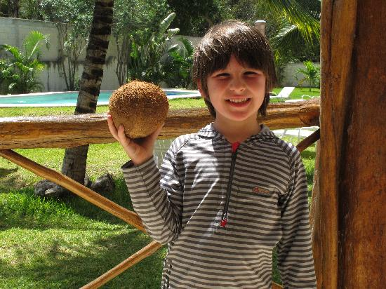 Residence Kohunlich : Tom sur le balcon avec sa premiere noix de coco