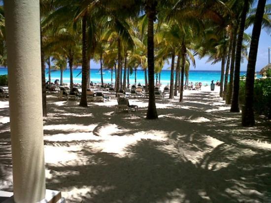 Hotel Riu Lupita: Vista del club de playa del Riu Lupita.