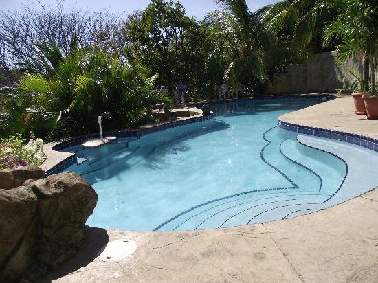 Las Palmas B&B: Pool