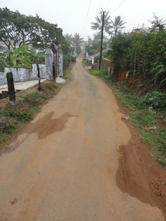 Sai Sadan Homestay: Road outside Sai Sadan