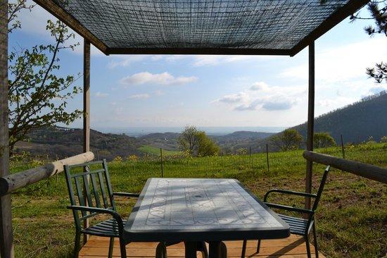 Agriturismo Il Casalone: View from Il Casalone