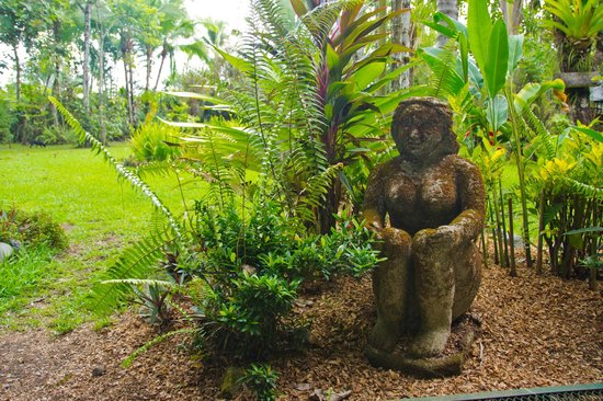 La Chosa del Manglar : Just a tidbit of the landscaping..