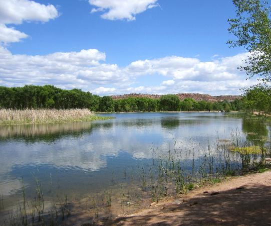 Cottonwood, AZ: Dead Horse Ranch State Park