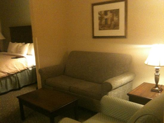 Country Inn & Suites By Carlson, Asheville West (Biltmore Estate): The Sitting Area of King Room