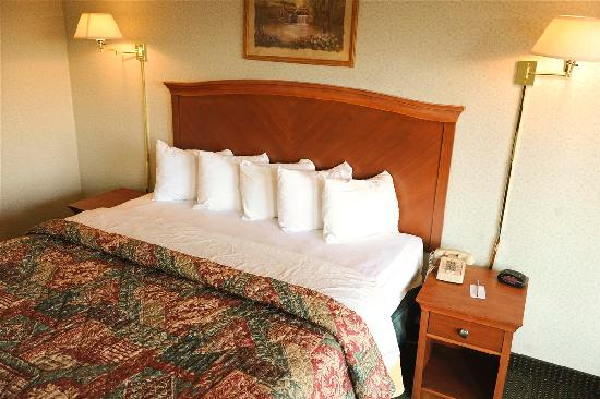 Downtown Inn & Suites: 1 King Bed Room