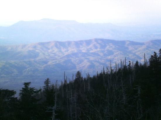 LeConte Lodge: Scenery from lodge