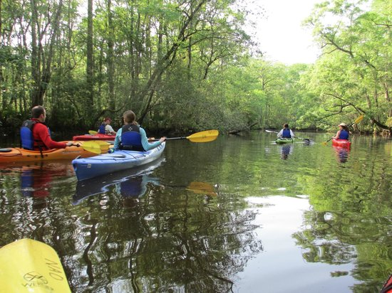 Nature Adventures : kayaking the creek