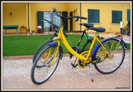 B&B Bertina: bici